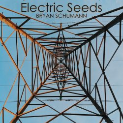 Electric Seeds - Digital Album Cover